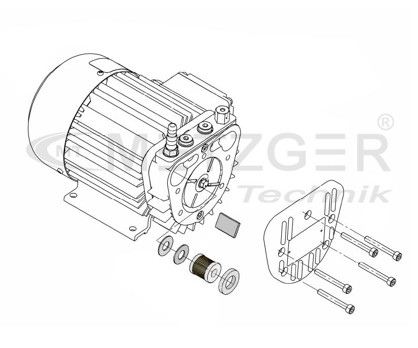 service-kit rotary vane pump picolino vte  dte 8